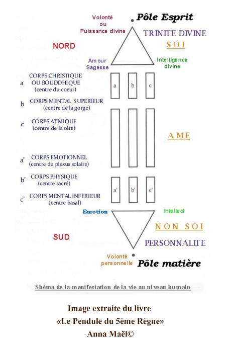 clair et distinctif design distinctif la clientèle d'abord celesios.com - Anneau de Ré ou Bague Atlante